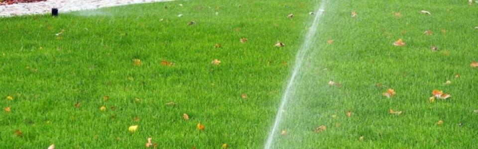 Bonomolo Irrigazione Palermo via volturno